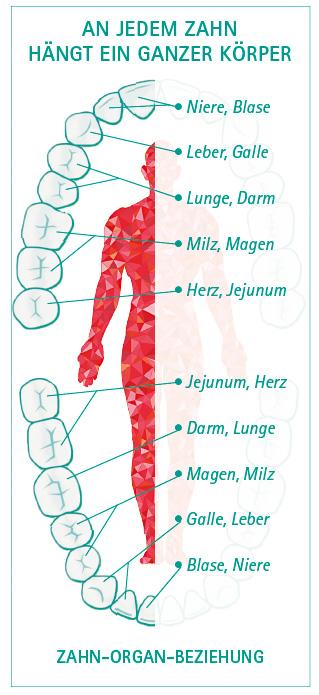 www.haus-der-zahngesundheit-koeln.de